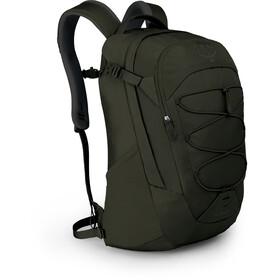 Osprey Quasar Backpack Herre cypress green